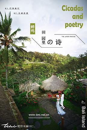 【巴厘岛】蝉鸣 田园里的诗