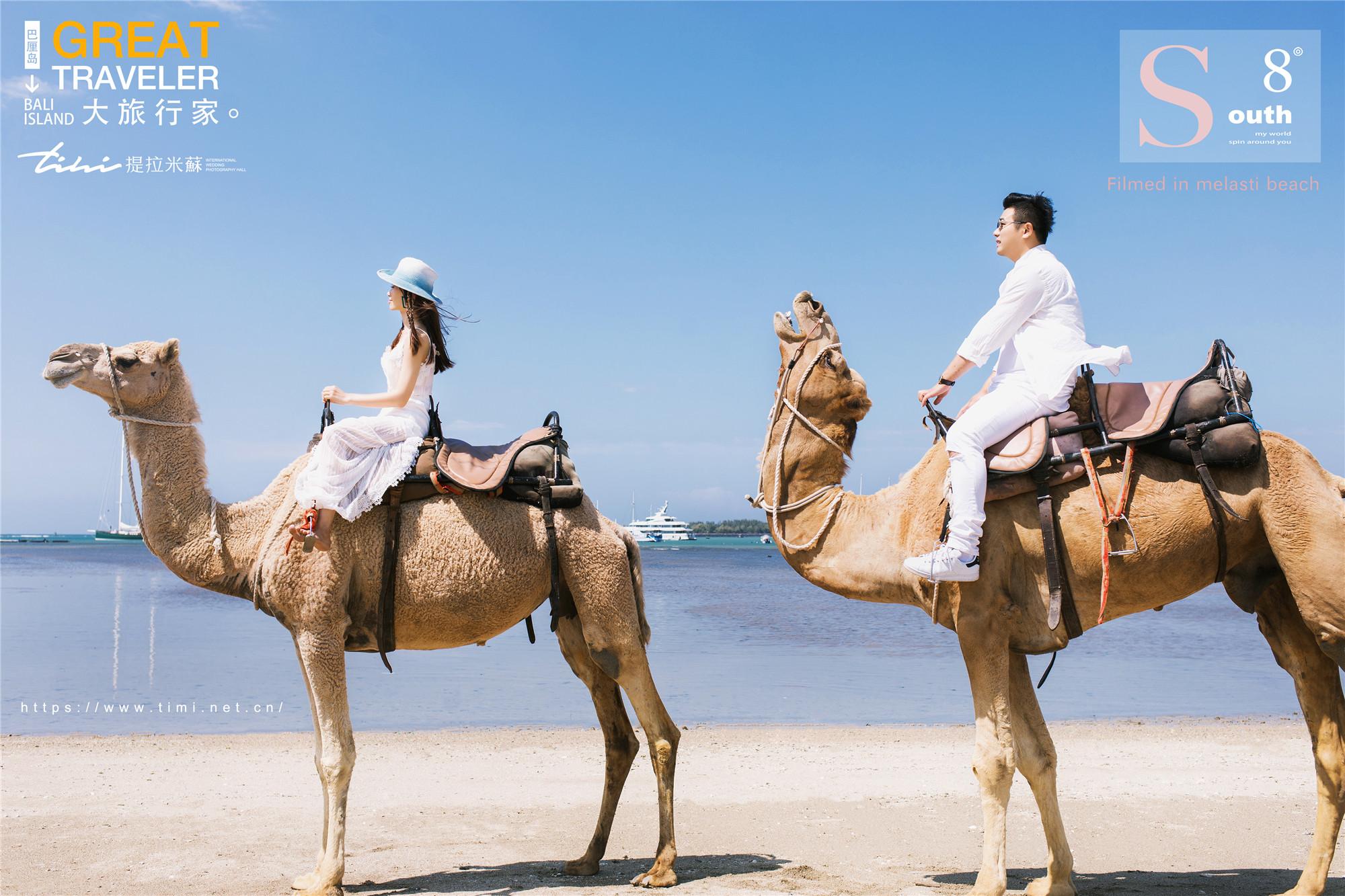 巴厘岛海边骆驼主题婚纱照